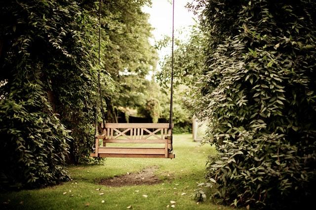 Hur kommer min trädgård att överleva vintern?